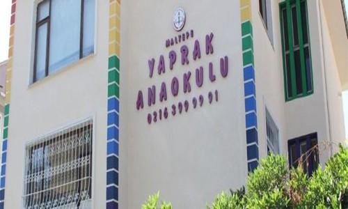 Yaprak Anaokulu