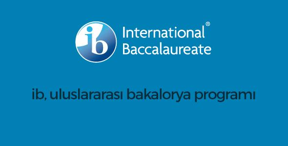 Uluslararası Bakalorya Programı 98