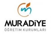 Muradiye Erkek Anadolu Lisesi